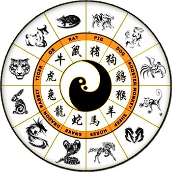 Sometimes you eat boar. Sometimes dragon. That's what the Chinese zodiac is about, right?